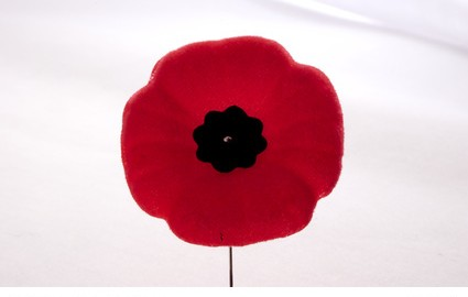 Poppy to show Remembrance day