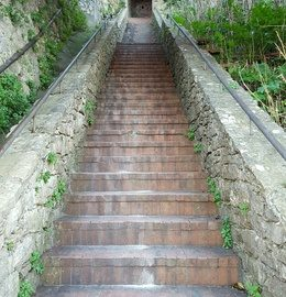 Stairs - showing oakville RMT