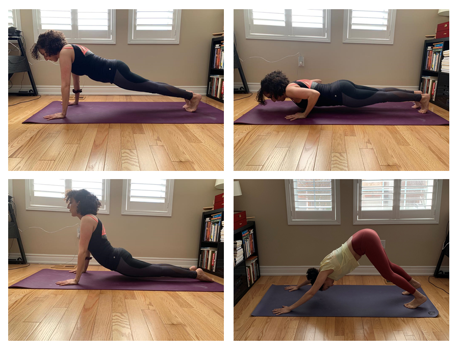 Burlington Physio demonstrating a step by step vinyasa chaturanga flow sequence for an educational blogpost on different styles of yoga
